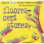 Jugendjazzorchester Niedersachsen - Flourescent Stones (1993)
