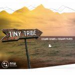 Tiny Tribe - Strange Stories & Faraway Places (2008)
